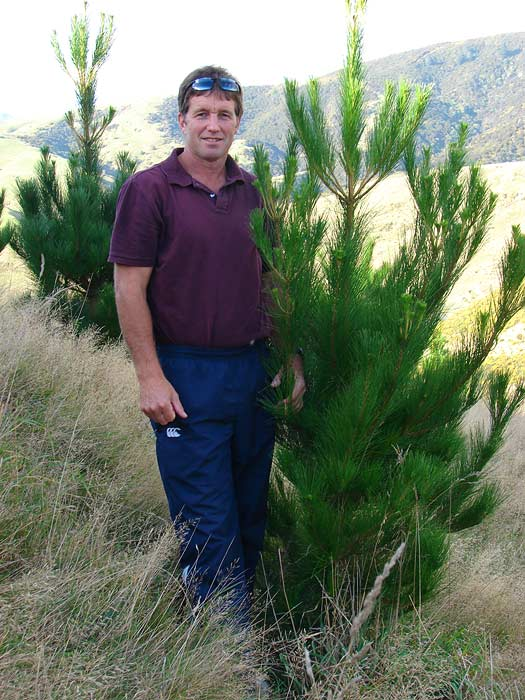 Nz forestry investments ltd certus investment powder technologies companies