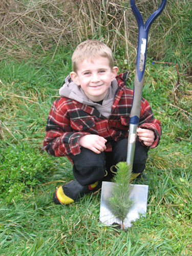 Happy Forestlands tree planters
